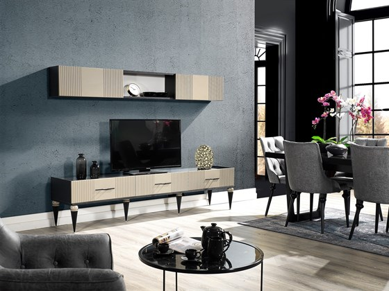 TINA TV UNIT